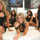Обои a1 gp grid girls