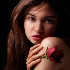 Обои beauty and red rose